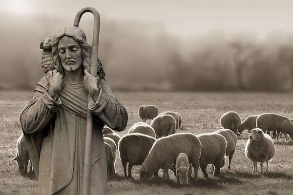 Jesus With Lambs